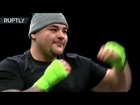 شاهد فيديو يظهر تدريب الملاكم البريطاني أنطوني جوشوا والأميركي أندي رويز