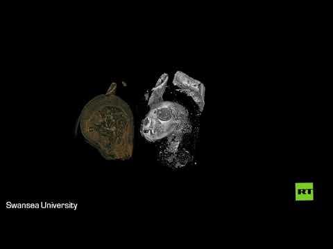 شاهد صور عالية الدقة تكشف عن ممارسات مثيرة للمصريين القدماء