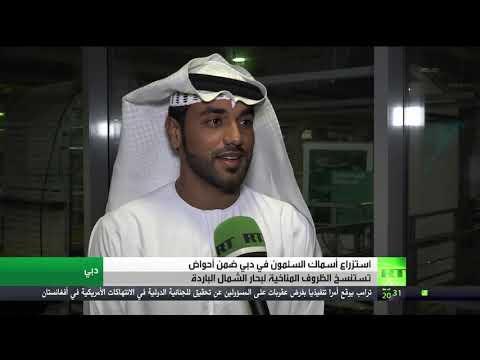استمرار مشروع  استزراع  السلمون في الإمارات رغم كورونا